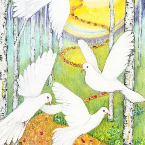 Doves at Dawn