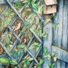 Trellis Sparrows